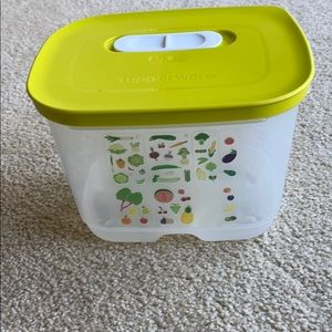 Tupperware Refrig Vegetable Storage Container NWOT